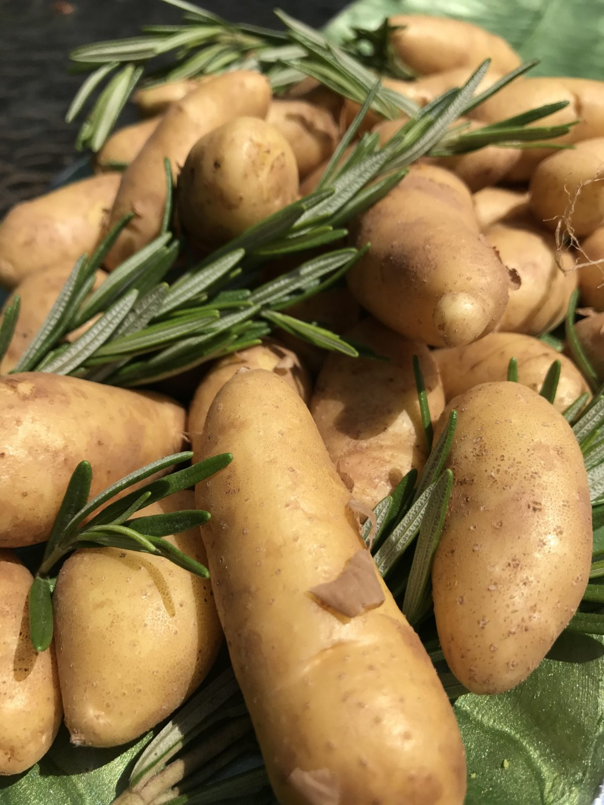 fingerling potatoes and rosemary