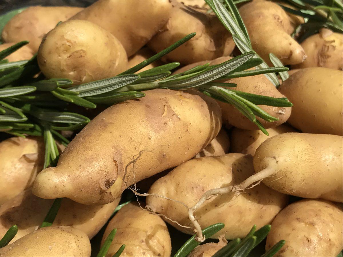 farmers market fingerling potatoes