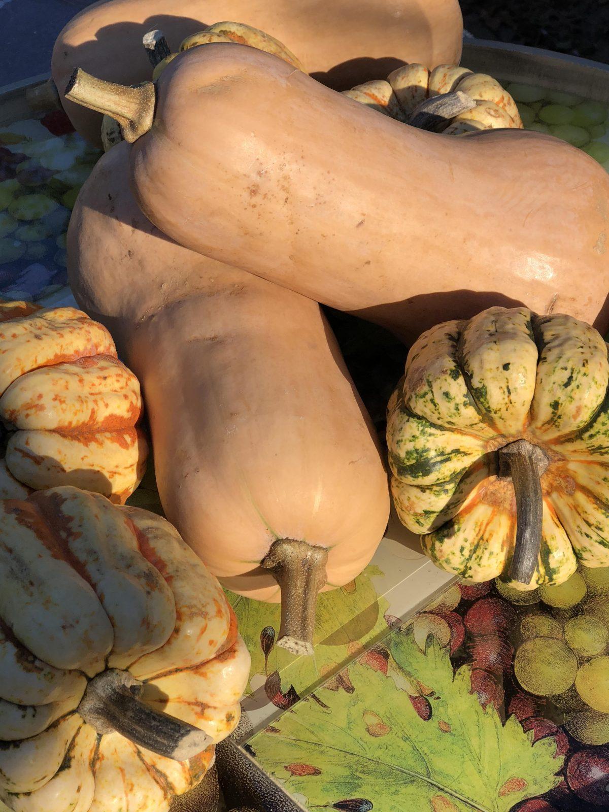 farmers maret butternut and dumpling squash